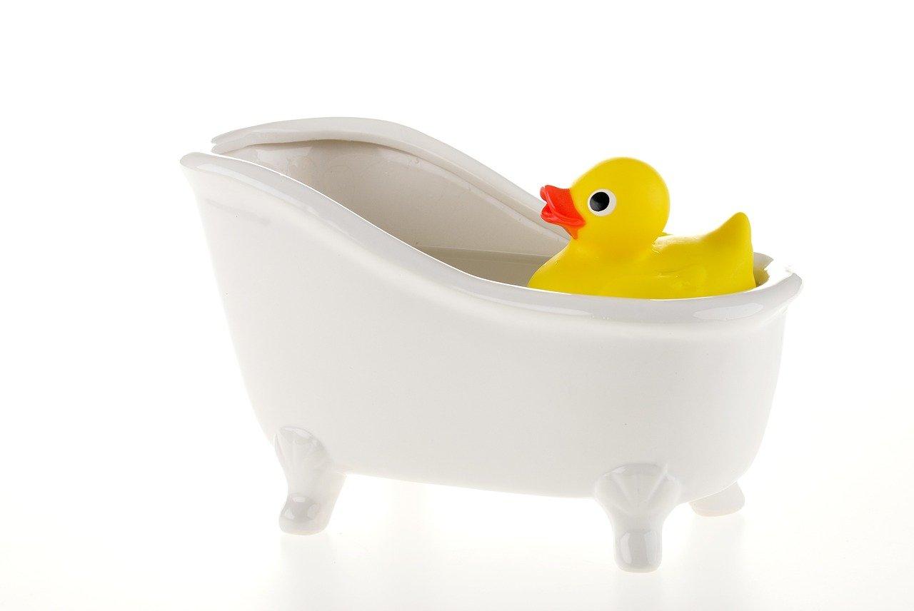 ברווז מהרביירה הצרפתית באמבטיה