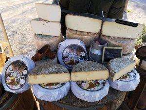 גבינה בפרובנס